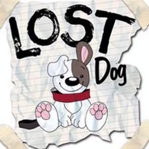 Lost Dog Image.jpg